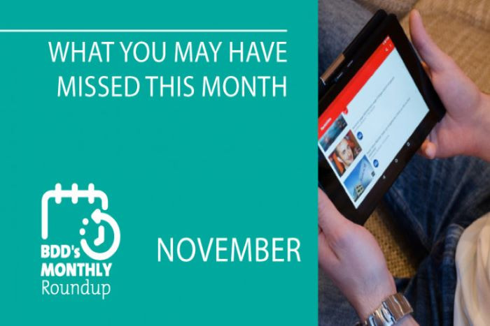 BDD's Monthly Roundup: What You May Have Missed (November)